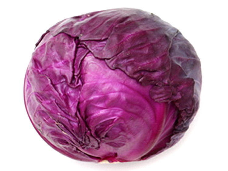 甘蓝紫精品(紫包菜)莆田仙游糕点总经销点图片