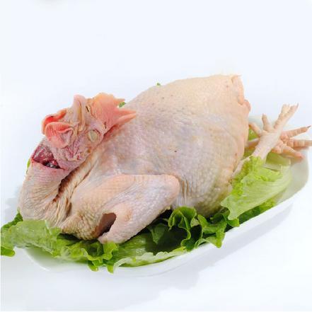 农家土鸡 1.7-2.8斤/只(当日宰杀,净重出售 、无内脏)