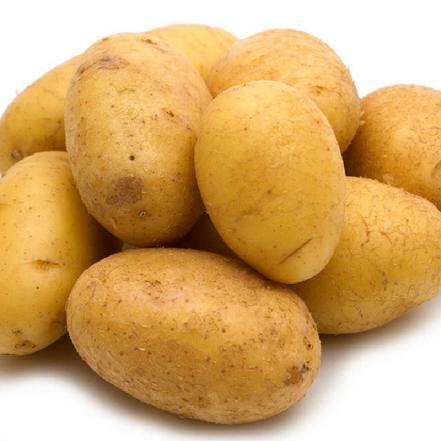 土豆(马铃薯)