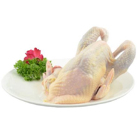 普通土鸡1.8-2斤(切块)(当日宰杀,净重出售、无内脏)