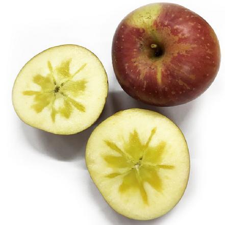 云南昭通丑苹果(野生冰糖心苹果) 80#以上果(单斤装)比阿克苏还好吃的苹果!!