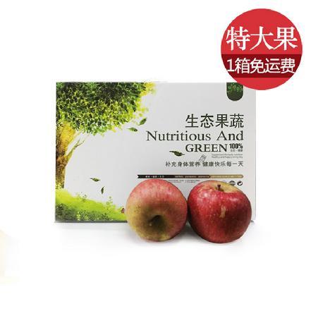 云南昭通丑苹果 85#以上特大果(礼盒装 净重约9.0-9.5斤)比阿克苏还好吃的苹果!!