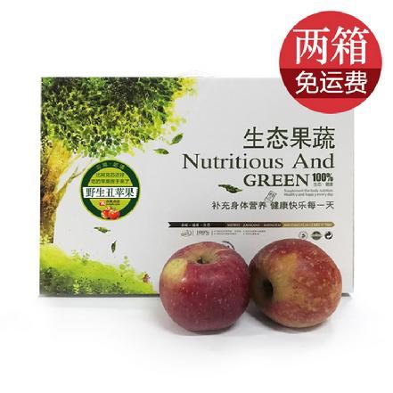 云南昭通丑苹果 75-85#果,比阿克苏还好吃的苹果(礼盒装,净重9-9.5斤/箱)