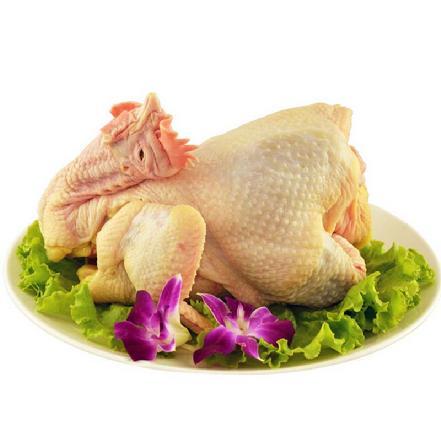 三黄鸡 2-2.7斤/只(当日宰杀,净重出售、无内脏)